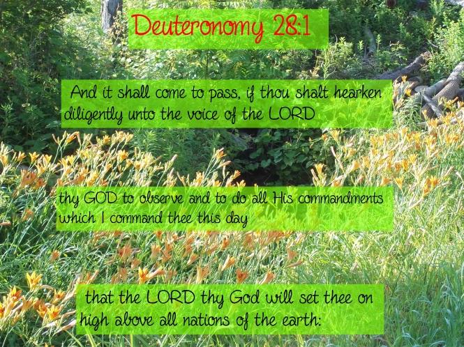Deuteronomy 28 verse 1 2018