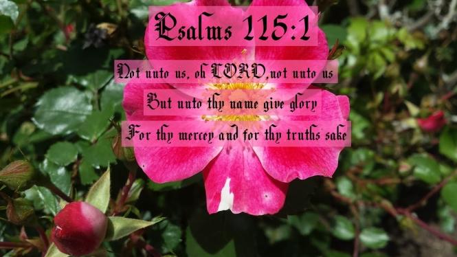 Psalms 115 verse 1 2018