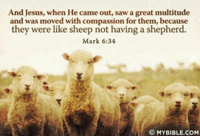 Mark 6 verse 36 kjv