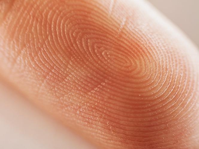 fingerprint 6-9-19