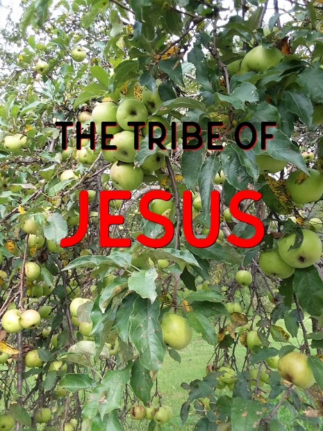 The Tribe of Jesus 11-11-18